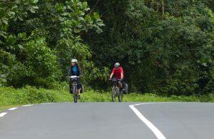 Reisebericht Fahrradtour Ruanda, Nyungwe Forest