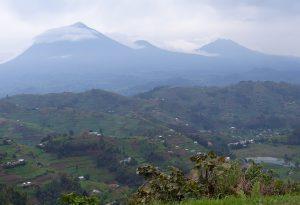 Vulkanberge Ruanda - noch ein Stück weg vom Nyiragongo